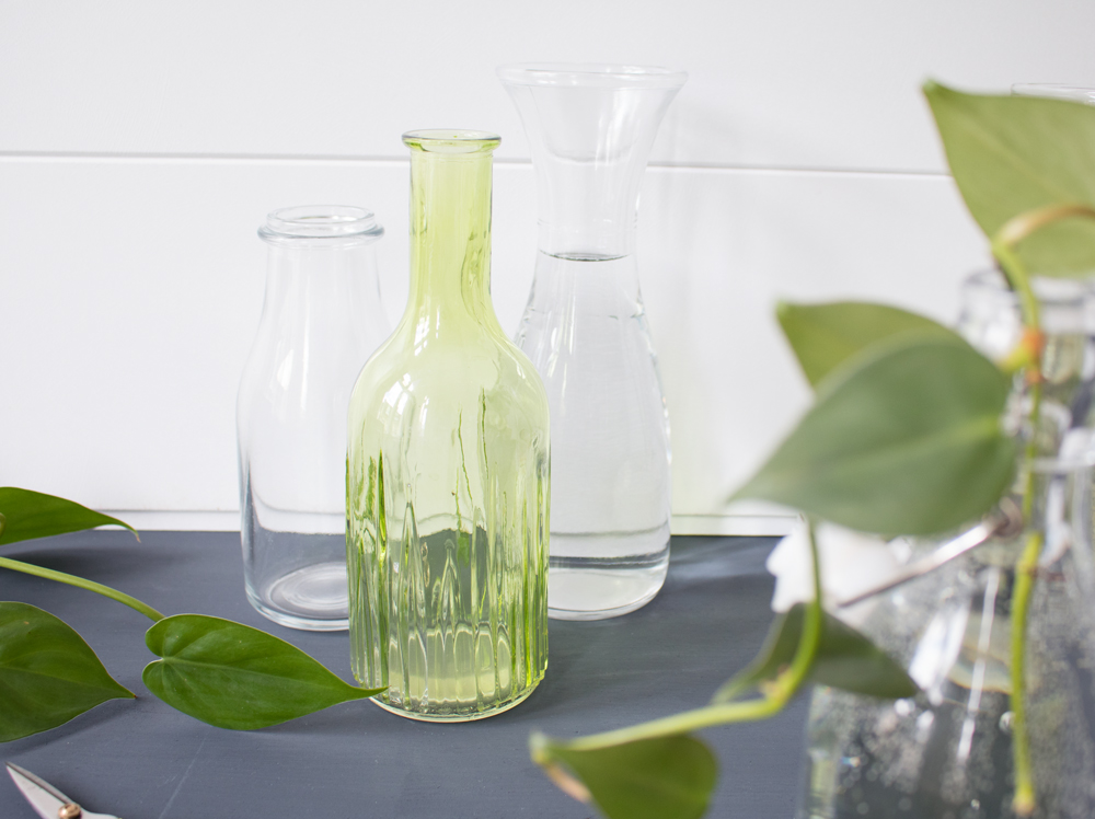urban-jungle-bloggers-plants-and-glass-4