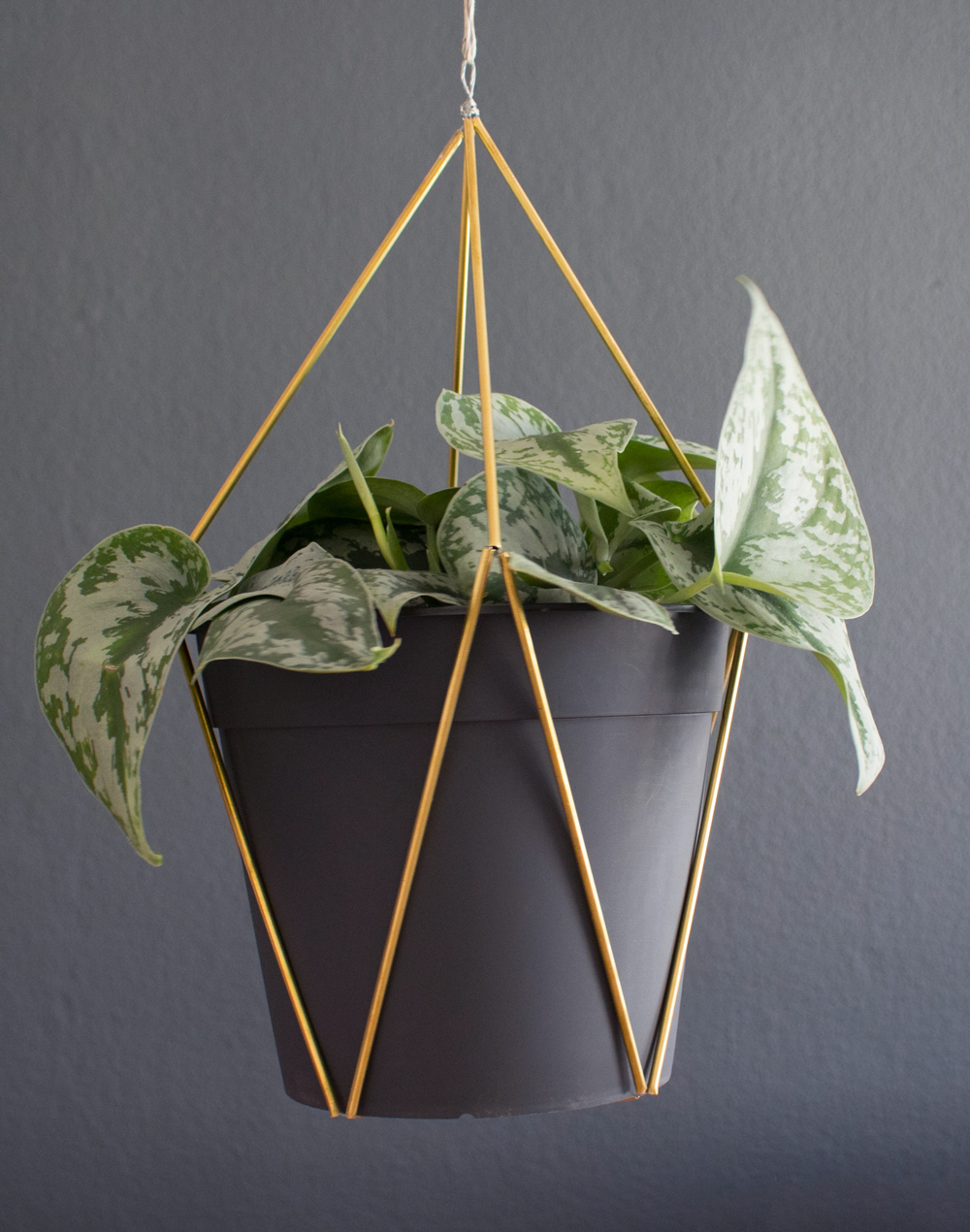diy-hanging-planter-messing-rohre-gold-6